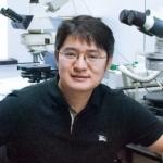 Prof. Zhihong Nie